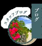 竹富島ビーチ