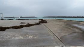 桟橋の海藻! 海に戻すわけには行かないし・・・(-_-;)